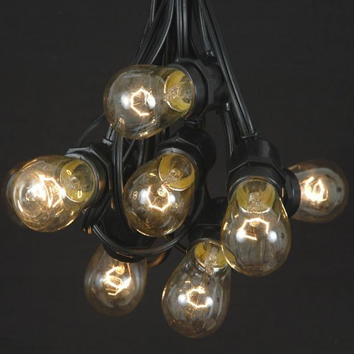 37.5 Foot S14 Clear Outdoor Patio Globe String Light Set, Black Wire, 25 Bulb Set