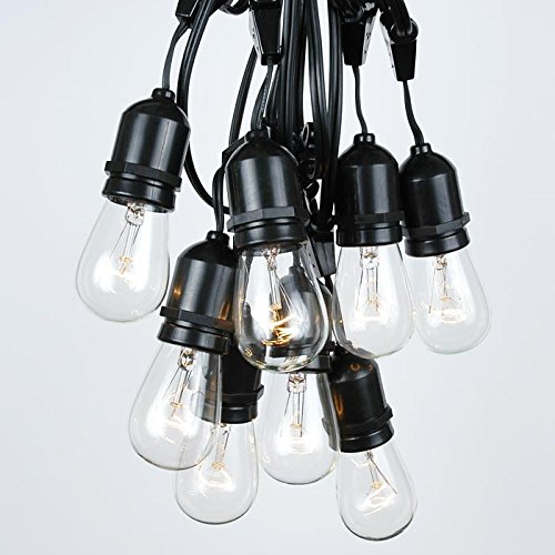 37.5 Foot S14 Clear Outdoor Patio Globe String Light Set, Suspended, Black Wire, 25 Bulb Set