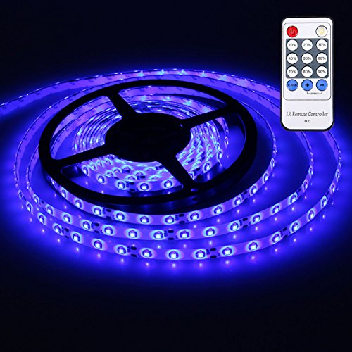 XKTTSUEERCRR 3528 SMD 16.4Ft 5Meter 300LEDs Blue Flexible Waterproof Strip Lighting With 12 key Switch IR Remote LED Dimmer Controller and DC connector