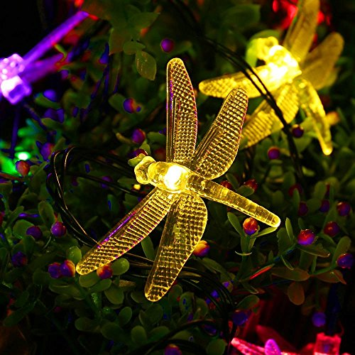 Outdoor Solar String Lights With Dragonflies By Icicle