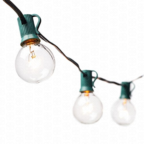 G40 Globe String Lights with 25 Clear Bulbs by Deneve® – UL Listed Commercial Quality String Lights Perfect for Indoor / Outdoor Use – 3-YEAR 100% Satisfaction Guarantee on Light String! (Green) Reviews