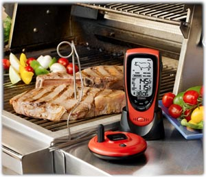 Oregon Scientific AW131 Talking Wireless BBQ/Oven Thermometer