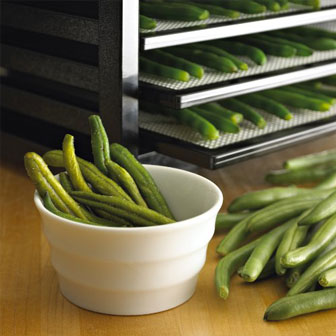 Excalibur Hyperware Fluctuation Technology prevents the food from hardening or growing mold.