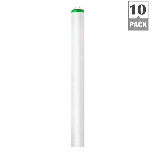 4 ft. T12 40-Watt Cool White Supreme (4100K) ALTO Linear Fluorescent Light Bulb (10-Pack)