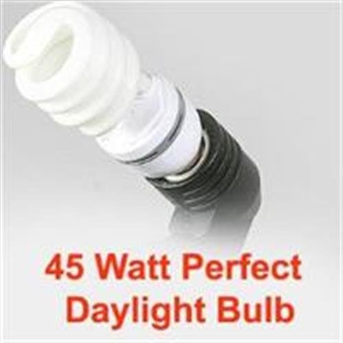 JACKYLED 45W Photography Video Perfect Daylight CFL Fluorescent Light Bulb 5500K Daylight balanced
