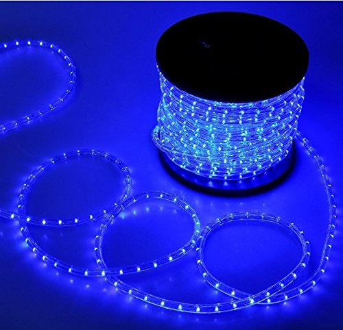 Flexible 150 Led Crystal Clear Pvc Tubing Rope Light
