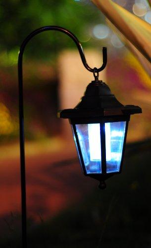 Hanging Solar Coach Lights
