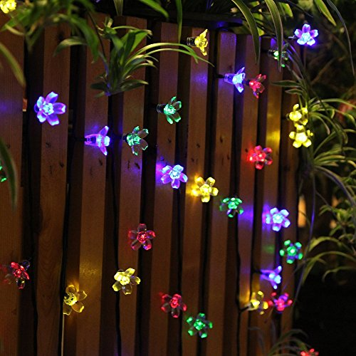 Solar Outdoor String Lights By Innoo Tech: Innoo Tech Solar String Lights Outdoor Flower Garden Light