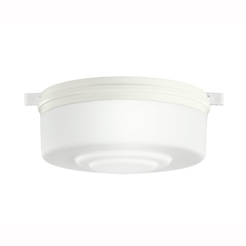 Ceiling Lamp Copper Protective Glass