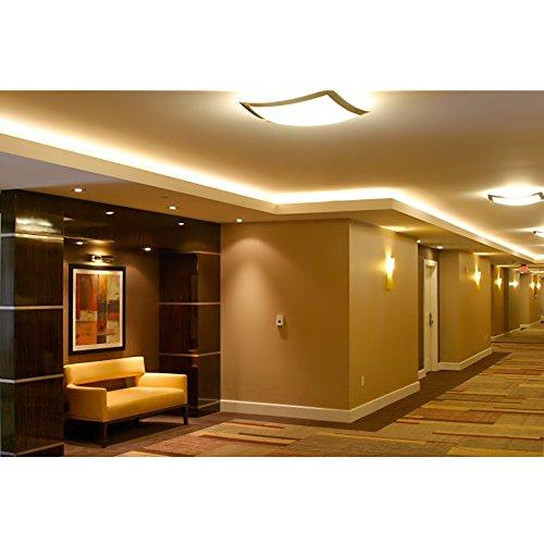Le 12v Flexible Led Strip Lights 3000k Warm White 300: LE® 164ft Flexible LED Strip Lights, 3000 Units SMD 5050