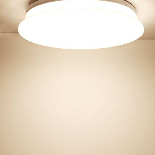 40w Led Ceiling Light Fixture Lamp Flush Mount Room: LE® 40W Dimmable Warm White 19.3-Inch LED Ceiling Lights