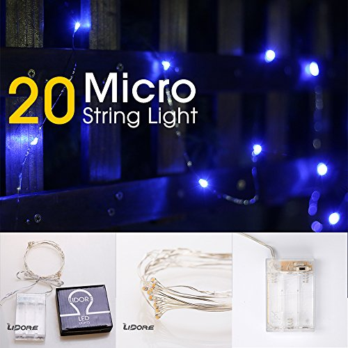 Lidore Micro Led 20 String Lights With Timer Battery