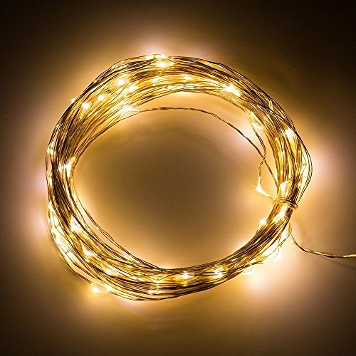 Lightsetc 33ft 100led Warm White Copper Wire Lights Led
