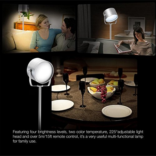 Oxyled F10 Remote Control Led Floor Lamp For Living Room