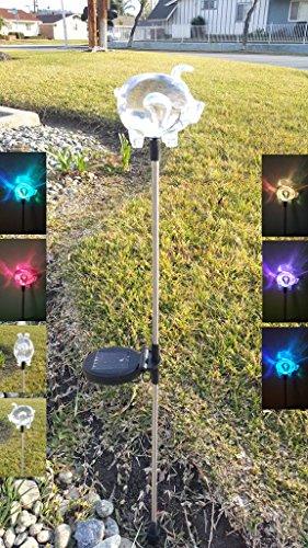 Exlight Solar Powered Ground Light 6 White Leds Easy To